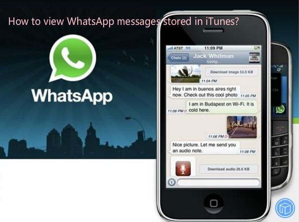 see whatsapp chats saved in itunes